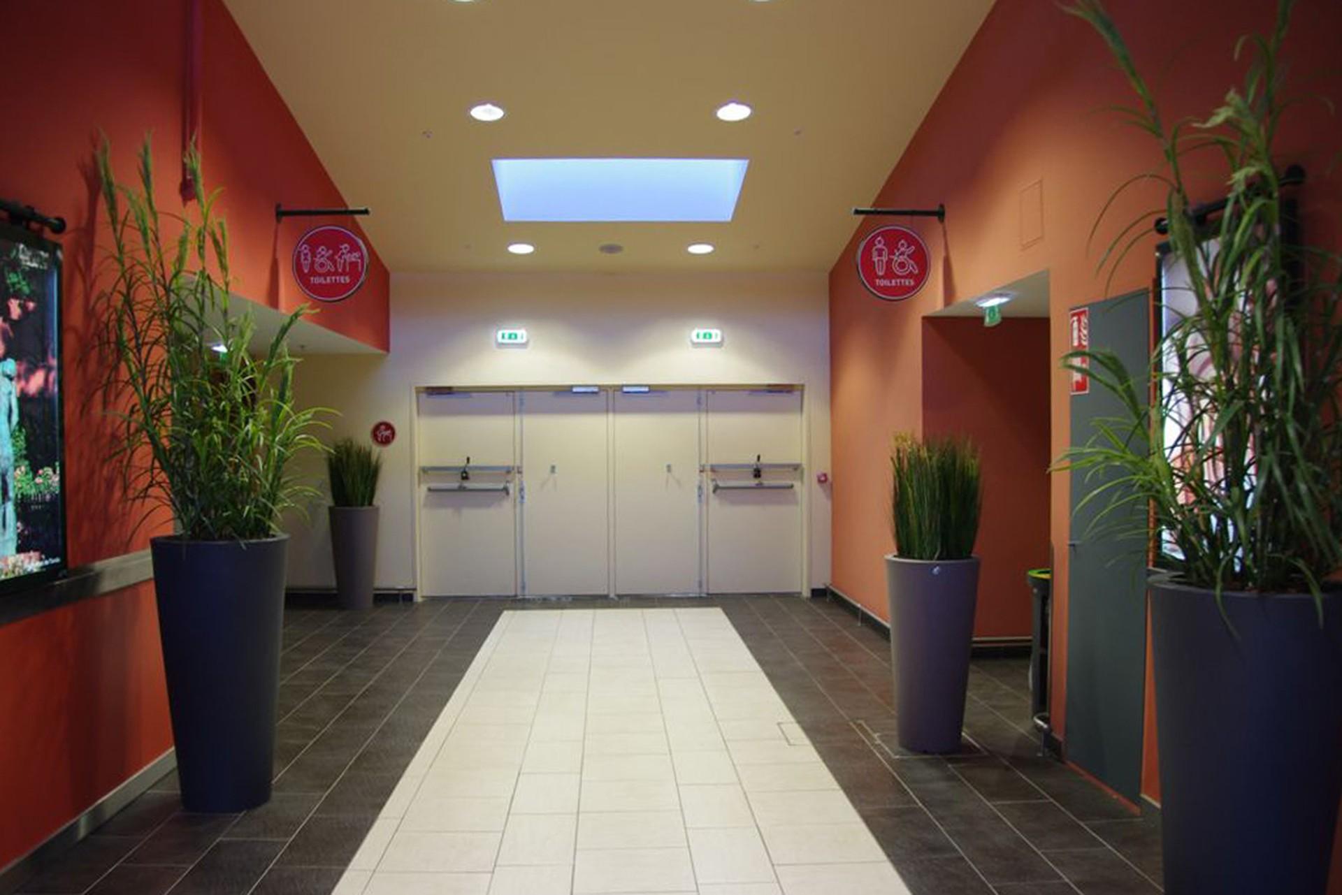 DOORTAL - Auchan Montauban - porte hall d'accueil